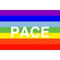 Fredsflagga - PACE betyder fred på italienska. posterflagga