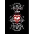 Caliban - The Awakening. Posterflagga