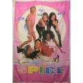 Spice Girls pink big flag posterflagga