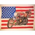 Harley - Usa flag Skeleton Man. posterflagga SAMLAROBJEKT