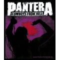 PANTERA - COWBOYS FROM HELL. Tygmärke